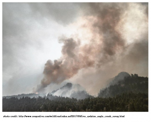 Eagle Creek fire - photo courtesy of Oregonlive.com